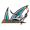 San Jose Barracuda